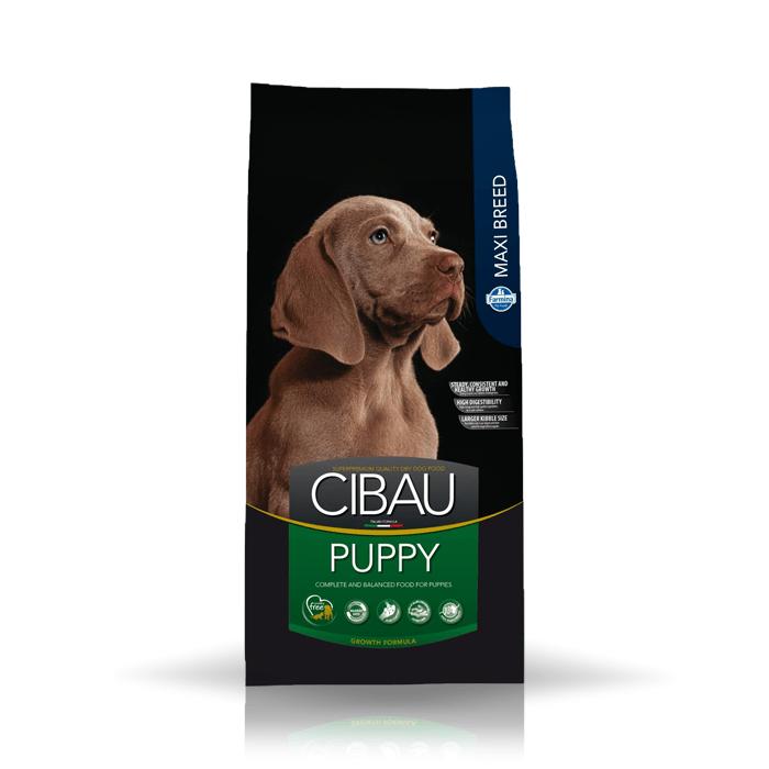Karmy suche dla psa - Farmina Cibau Puppy Maxi