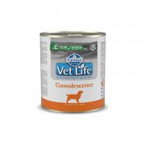 Farmina Vet Life Natural Diet Dog Convalescence 300g