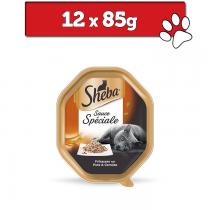Sheba Frykas Sauce Speciale tacka 85g x 12