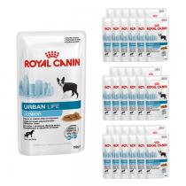 Royal Canin Urban Life Junior 150g x 36